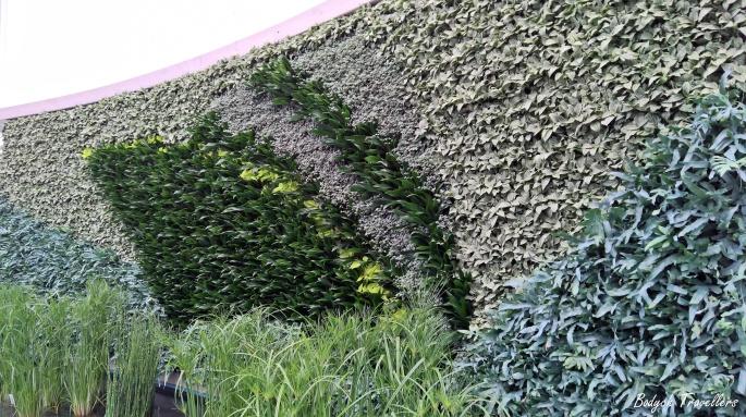 gärten der welt 76.jpg